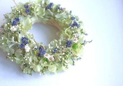 Green_yoko